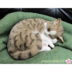 "Schlafende Katze ""Minka"""