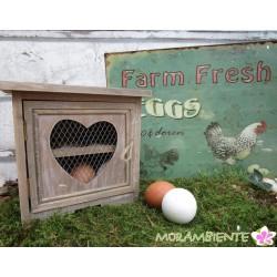 Schrank für bis zu 12 Eier
