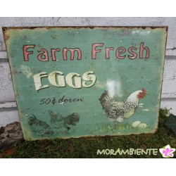 "Blechschild  ""Farm Fresh EGGS"""